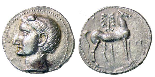 El caballo y la palmera, símbolos de Carthago.