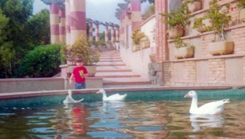 Los patos del Castillo de los Patos cuando había patos en el castillo.