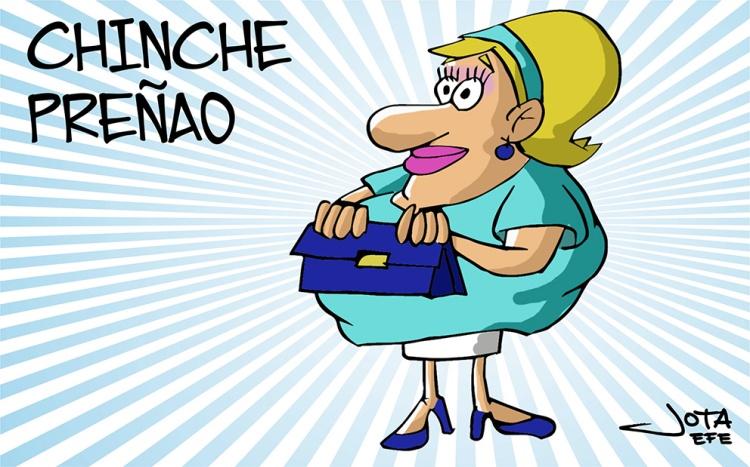 chinche-preñao-color