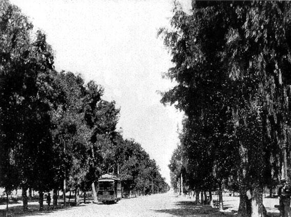 Los tranvías por la Alameda